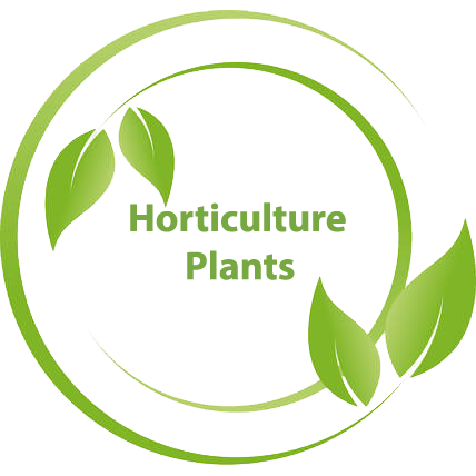Horticulture-plants